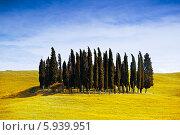 Купить «Пейзажи Тосканы», фото № 5939951, снято 12 мая 2014 г. (c) Наталья Волкова / Фотобанк Лори