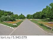 Купить «Парк Влахерское-Кузьминки в Люблине в Москве», эксклюзивное фото № 5943079, снято 20 мая 2014 г. (c) lana1501 / Фотобанк Лори
