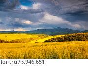 Купить «Пейзажи Тосканы», фото № 5946651, снято 13 мая 2014 г. (c) Наталья Волкова / Фотобанк Лори