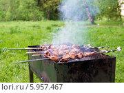 Купить «Шашлык жарится на мангале», фото № 5957467, снято 24 мая 2014 г. (c) Володина Ольга / Фотобанк Лори