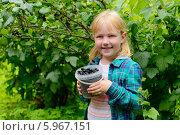 Купить «Девочка собирает черную смородину на даче», фото № 5967151, снято 28 июля 2013 г. (c) Марина Славина / Фотобанк Лори