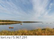 Купить «Соловецкое побережье летним солнечным вечером», фото № 5967291, снято 6 августа 2013 г. (c) Горшков Игорь / Фотобанк Лори