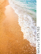 Купить «Песчаный пляж у моря», фото № 5975163, снято 5 августа 2013 г. (c) g.bruev / Фотобанк Лори