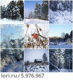 Купить «Коллаж с зимними видами природы», фото № 5976967, снято 9 июля 2020 г. (c) Любовь Назарова / Фотобанк Лори