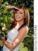 Купить «Красивая девушка с каштановыми волосами стоит возле яблони в саду», фото № 5977643, снято 14 декабря 2018 г. (c) BE&W Photo / Фотобанк Лори