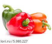 Купить «Зеленый, красный и оранжевый перцы на белом фоне», фото № 5980227, снято 31 мая 2013 г. (c) Natalja Stotika / Фотобанк Лори