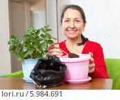 Женщина пересаживает комнатное растение. Стоковое фото, фотограф Яков Филимонов / Фотобанк Лори