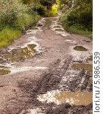 Купить «Лужи в ямах на грунтовой дороге», фото № 5986539, снято 7 июня 2014 г. (c) EugeneSergeev / Фотобанк Лори