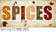 Слово spices из различных специй. Стоковое фото, фотограф Natasha Breen / Фотобанк Лори