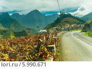 Осень. Типичный виноградник Мадейры в горах. Стоковое фото, фотограф Ilya Druzhinin / Фотобанк Лори