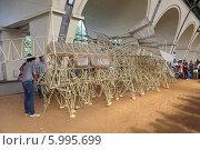 Купить «Любопытные изучают скелет фантастического животного на выставке «Кинетическая жизнь песчаных пляжей», Москва», эксклюзивное фото № 5995699, снято 1 июня 2014 г. (c) Алексей Гусев / Фотобанк Лори