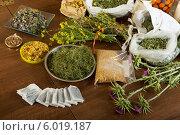 Купить «Различные травы на столе», фото № 6019187, снято 20 мая 2014 г. (c) Яков Филимонов / Фотобанк Лори