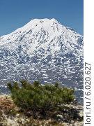 Купить «Вид на Ичинский вулкан. Камчатка», фото № 6020627, снято 14 июня 2014 г. (c) А. А. Пирагис / Фотобанк Лори