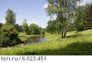 Купить «Долина реки Славянки в Павловске (парк)», фото № 6023451, снято 14 июня 2014 г. (c) Анна Сибирякова / Фотобанк Лори