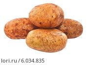 Неочищенный картофель. Стоковое фото, фотограф Александр Власик / Фотобанк Лори