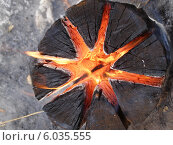 Купить «Костер в форме звезды внутри полена», фото № 6035555, снято 18 февраля 2010 г. (c) Александра Лукашина / Фотобанк Лори