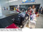 Купить «Выдача багажа в аэропорту Антальи в Турции», фото № 6036759, снято 16 июня 2014 г. (c) Володина Ольга / Фотобанк Лори