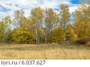 Осень в горах Северного Кавказа. Стоковое фото, фотограф Ерохин Валентин / Фотобанк Лори