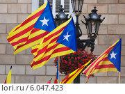 Catalonia flags (2014 год). Стоковое фото, фотограф Яков Филимонов / Фотобанк Лори