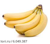 Купить «Bananas bunch isolated on white background cutout», фото № 6049387, снято 22 марта 2013 г. (c) Natalja Stotika / Фотобанк Лори