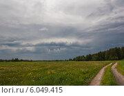 Дорога в поле. Стоковое фото, фотограф Aleksandr Tishkov / Фотобанк Лори