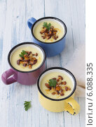 Картофельный крем-суп с лесными грибами. Стоковое фото, фотограф Ольга Лепёшкина / Фотобанк Лори