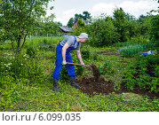 Купить «Мужчина средних лет работает на садовом участке в начале лета», фото № 6099035, снято 20 июня 2014 г. (c) Сергей Великанов / Фотобанк Лори