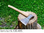 Купить «Топор», фото № 6130495, снято 13 июля 2014 г. (c) Елена Руй / Фотобанк Лори