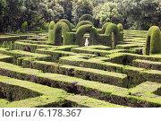Plant at Labyrinth Park of Horta in Barcelona (2014 год). Стоковое фото, фотограф Яков Филимонов / Фотобанк Лори
