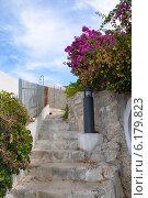 Красивая лестница с цветами в городе Пескичи, полуостров Гаргано, Италия. Стоковое фото, фотограф Bohumil Prazsky / Фотобанк Лори