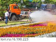 Полив уличного цветника в городе Лыткарино Московской области (2014 год). Редакционное фото, фотограф Владимир Сергеев / Фотобанк Лори