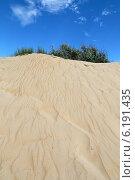 Купить «Песчаная дюна с кустарником наверху», фото № 6191435, снято 13 июня 2014 г. (c) Емельянов Валерий / Фотобанк Лори