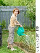 Купить «Улыбающаяся женщина поливает из лейки грядку в огороде», фото № 6201199, снято 18 июля 2014 г. (c) Юлия Кузнецова / Фотобанк Лори
