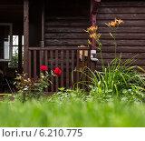 Цветы на фоне стены из деревянного бруса коричневого цвета. Стоковое фото, фотограф Sergey Kiselev / Фотобанк Лори