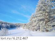 Купить «Заснеженная зимняя опушка леса», фото № 6212467, снято 2 июня 2013 г. (c) Сергей Девяткин / Фотобанк Лори