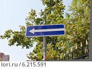 """Купить «Дорожный знак """"Одностороннее движение""""», фото № 6215591, снято 30 июля 2014 г. (c) Victoria Demidova / Фотобанк Лори"""