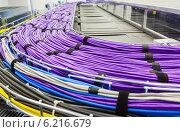 Купить «Множество сетевых кабелей», фото № 6216679, снято 22 января 2019 г. (c) Mikhail Starodubov / Фотобанк Лори