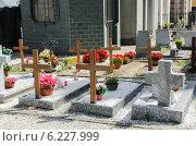 Купить «Small cemetery in Italy on summer day», фото № 6227999, снято 6 февраля 2010 г. (c) Elnur / Фотобанк Лори
