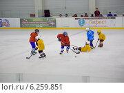 Детская хоккейная команда (2013 год). Редакционное фото, фотограф Анастасия Улитко / Фотобанк Лори