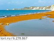 Купить «Xi Beach morning view (Greece, Kefalonia).», фото № 6278867, снято 16 июня 2014 г. (c) Юрий Брыкайло / Фотобанк Лори