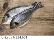 Купить «Gilt-head bream fish on wooden background. Mediterranean tavern, delicious meal.», фото № 6284631, снято 18 августа 2018 г. (c) BE&W Photo / Фотобанк Лори