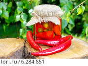 Купить «Pickled red peppers. Autumn dish», фото № 6284851, снято 21 июля 2018 г. (c) BE&W Photo / Фотобанк Лори
