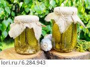 Купить «Pickled cucumbers in glass jar. Summer dish», фото № 6284943, снято 22 августа 2019 г. (c) BE&W Photo / Фотобанк Лори