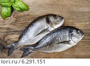 Купить «Gilt-head bream fish on wooden background. Mediterranean tavern, delicious meal.», фото № 6291151, снято 18 августа 2018 г. (c) BE&W Photo / Фотобанк Лори