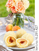 Купить «Apricot in pastry, popular austrian dish. Garden party table», фото № 6291427, снято 18 июня 2019 г. (c) BE&W Photo / Фотобанк Лори