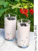 Купить «Blueberry and redcurrant smoothie on wooden tray. Garden party, grass in the background», фото № 6291463, снято 22 апреля 2019 г. (c) BE&W Photo / Фотобанк Лори