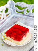 Купить «Strawberry cake with jelly topping on wooden tray in the garden», фото № 6291543, снято 13 июля 2019 г. (c) BE&W Photo / Фотобанк Лори