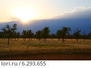 Закат. Стоковое фото, фотограф Петр Карташов / Фотобанк Лори