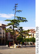 Купить «Plaza del Mercado in Logrono. La Rioja,», фото № 6303799, снято 27 июня 2014 г. (c) Яков Филимонов / Фотобанк Лори
