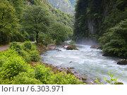 Горная река. Стоковое фото, фотограф Петр Карташов / Фотобанк Лори